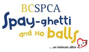 BCSPCA spay funding
